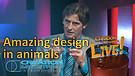 (4-10) Amazing design in animals (Creation Magazine LIVE!)