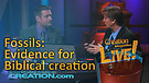 (3-02) Fossils: Evidence for Biblical creation (Creation Magazine LIVE!)